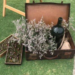 Suitcase Vintage Brown