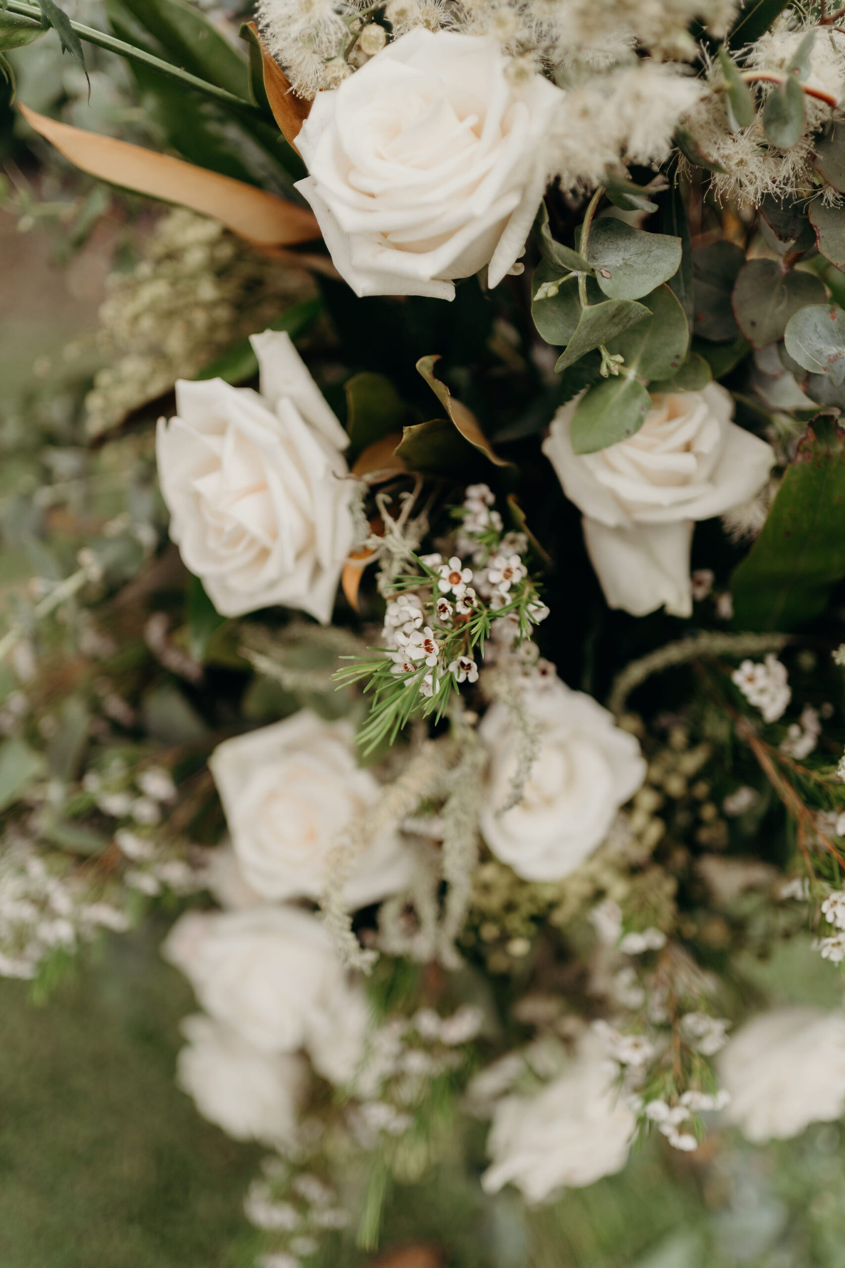 Carmen Steve View By Sydney Wedding 310